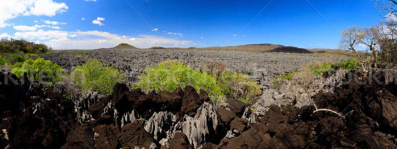 Tsingy rock formations in Ankarana, Madagascar wilderness Stock photo © artush