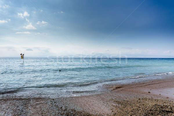 Alga praia baixo maré bali ilha Foto stock © artush