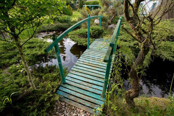 небольшой зеленый пешеходный мост пруд саду весны Сток-фото © artush