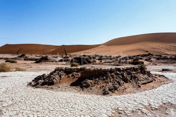 красивой пейзаж смерти долины Намибия Восход Сток-фото © artush