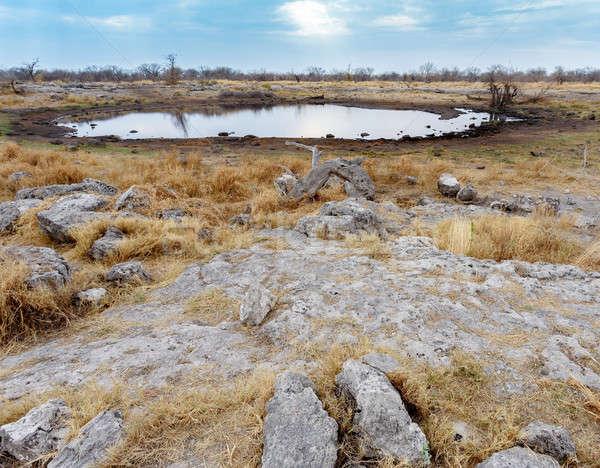 пусто Намибия игры резерв парка небе Сток-фото © artush