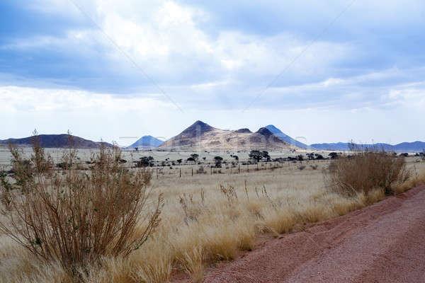エンドレス 道路 ナミビア 風景 自然 背景 ストックフォト © artush