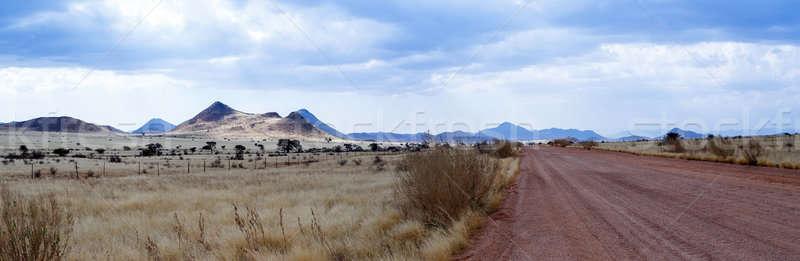 panorama of fantastic Namibia moonscape landscape Stock photo © artush