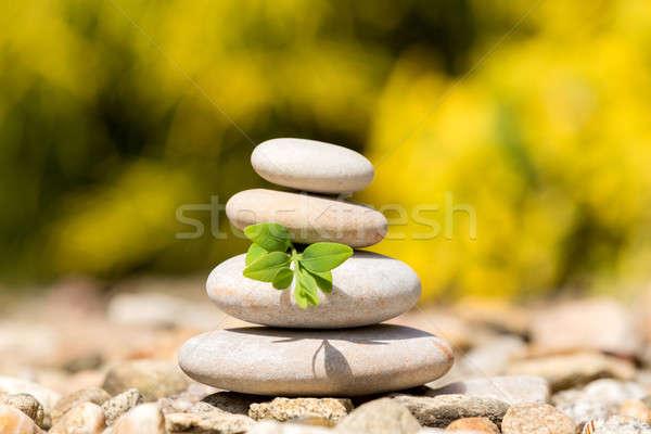 Equilíbrio pedras ao ar livre como Foto stock © artush