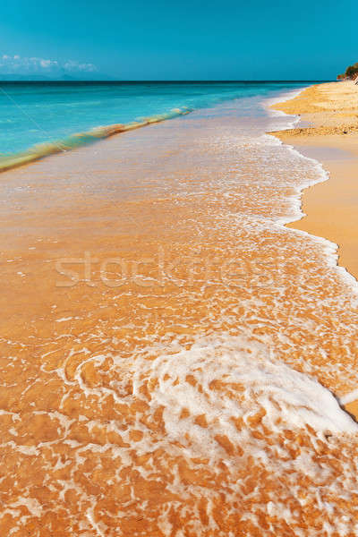 Sogno spiaggia bali Indonesia isola sabbia Foto d'archivio © artush