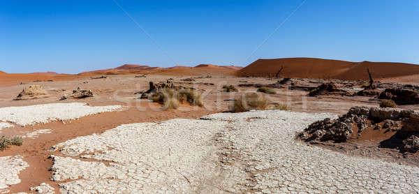 Gyönyörű tájkép rejtett sivatag panoráma széles Stock fotó © artush