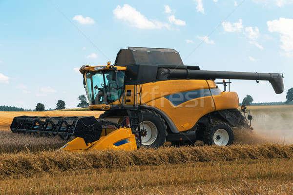 Yellov harvester on field harvesting gold wheat Stock photo © artush
