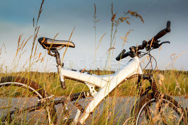 bike parked in a meadow Stock photo © artush