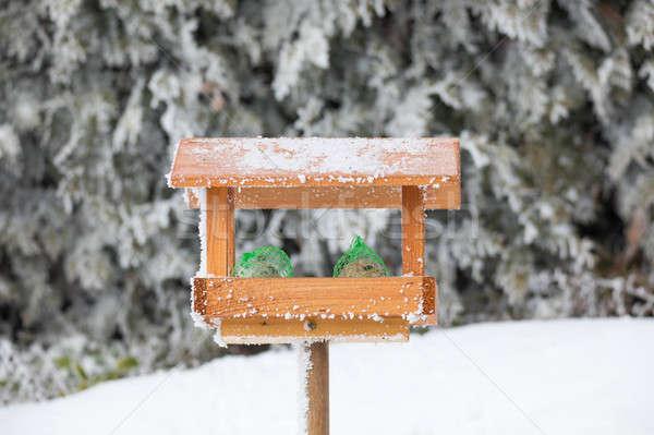Oiseau maison hiver jardin maison bois Photo stock © artush
