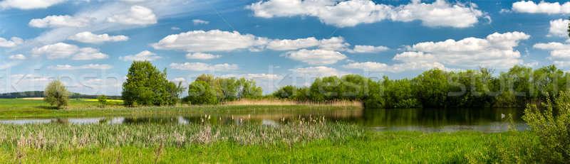 Beautiful summer rural landscape Stock photo © artush