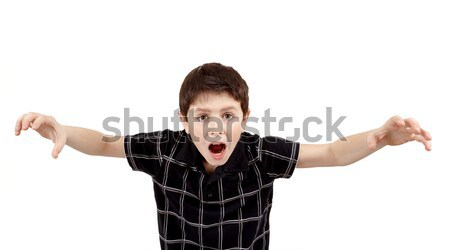 Young boy grimacing Stock photo © artush