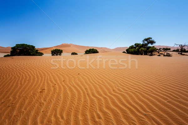 Belo paisagem escondido deserto nascer do sol morto Foto stock © artush