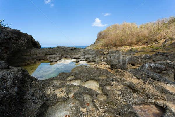 Kustlijn eiland droom bali punt beroemd Stockfoto © artush