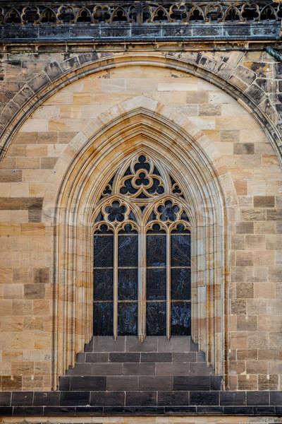 Kathedraal Praag Tsjechische Republiek architectuur detail beroemd Stockfoto © artush