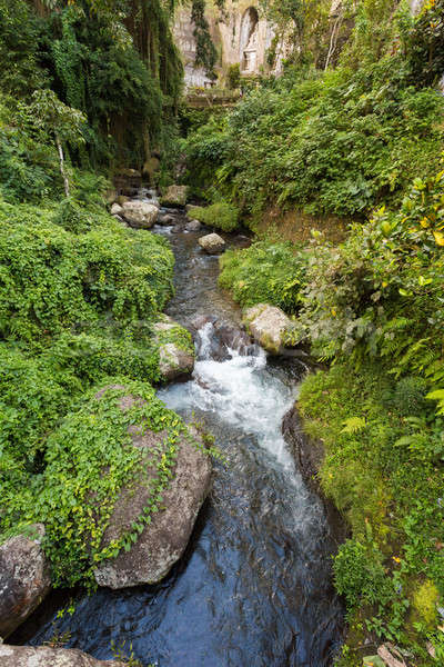 river landscape in temple Gunung Kawi Stock photo © artush