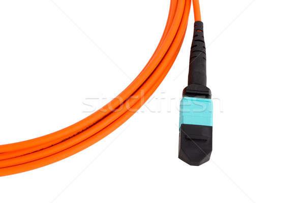 fiber optic MTP (MPO) pigtail, patchcord connectors Stock photo © artush