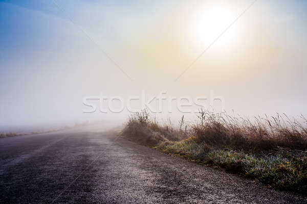Rural brumeux route sunrise mystique bleu Photo stock © artush
