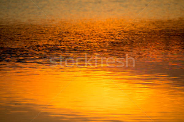 spring sunset reflecting in water Stock photo © artush