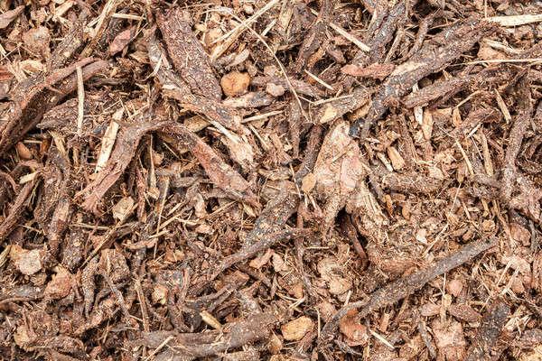 garden bark mulch texture Stock photo © artush