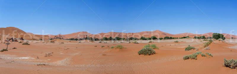 Hermosa paisaje oculto desierto panorama amplio Foto stock © artush