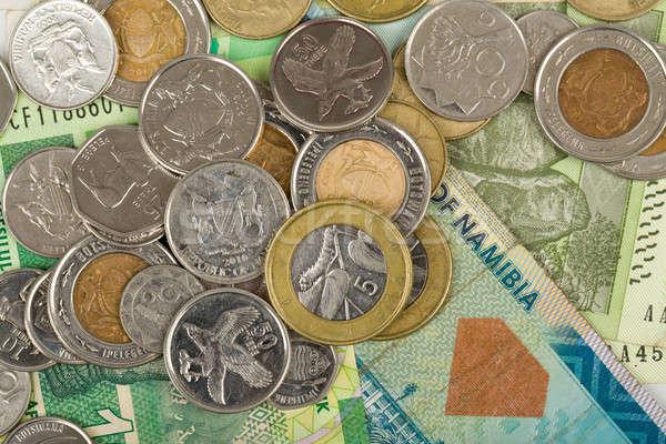 Güney afrika madeni para Botsvana dolar Stok fotoğraf © artush