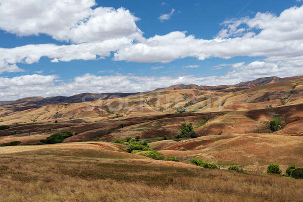 Traditional Madagascar hill landscape Stock photo © artush