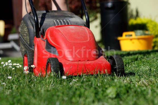 芝刈り機 緑の草 緑 庭園 草 晴れた ストックフォト © artush