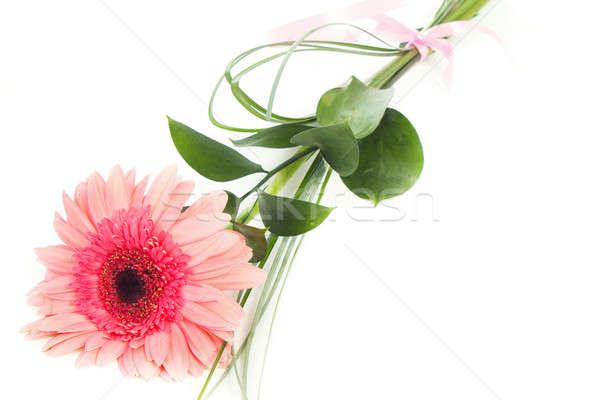 fresh bouquet from pimk gerbers Stock photo © artush