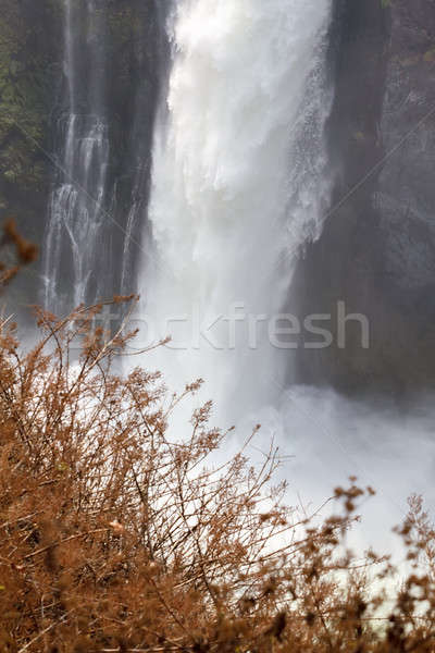 detail of the Victoria falls Stock photo © artush