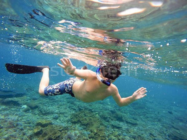 Podwodne młody chłopak snorkeling nurkowania tropikalnych morza Zdjęcia stock © artush