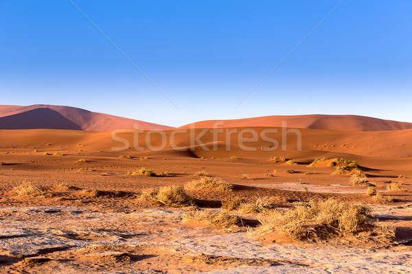 Rejtett sivatag felső gyönyörű napfelkelte tájkép Stock fotó © artush