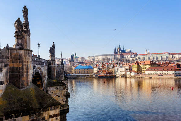 View of the Cathedral of St. Vitus, the Vltava River, Prague Stock photo © artush