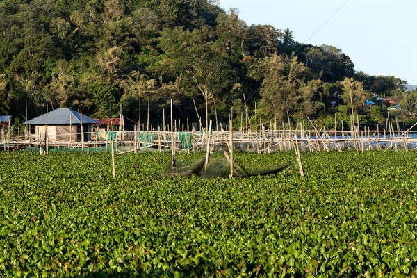 Fish farm at Lake Tondano Stock photo © artush