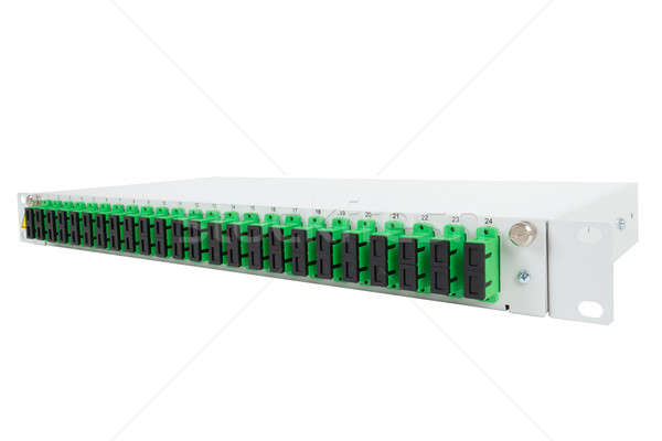 Fiber optic distribution frame with SC adapters Stock photo © artush