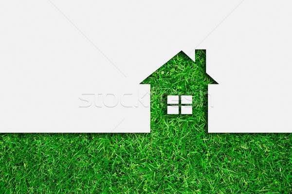 Basit yeşil eco ev ikon iş Stok fotoğraf © ashumskiy