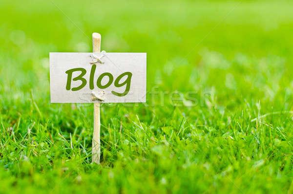 Blog kelime doğa natürmort Internet bahçe Stok fotoğraf © ashumskiy