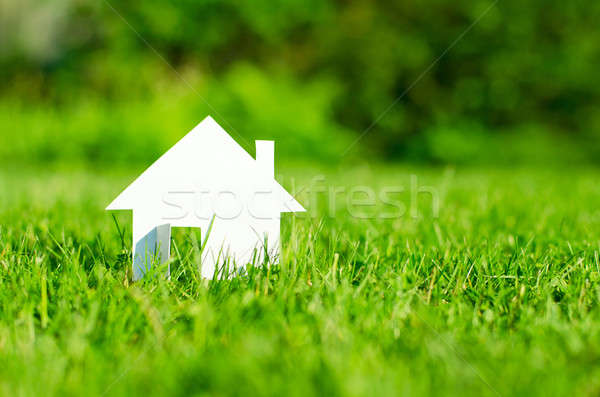 House Stock photo © ashumskiy