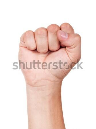 Fist. Stock photo © ashumskiy