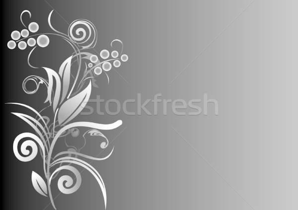 Bloem grijs schaal abstract natuur ontwerp Stockfoto © ashusha