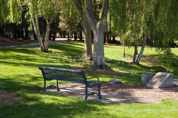 Park bank güneşli öğleden sonra parlak kontrast Stok fotoğraf © aspenrock