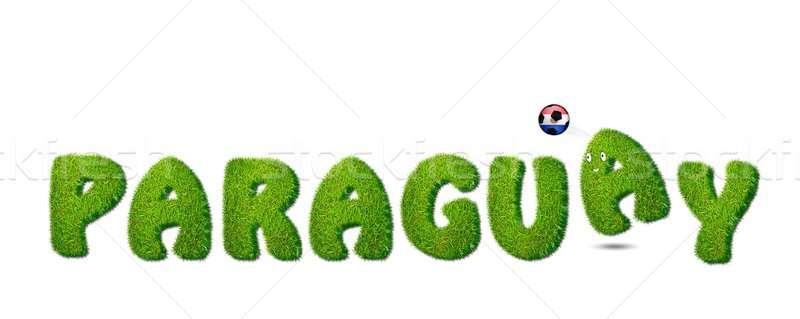 Paraguay calcio illustrazione bianco erba sport Foto d'archivio © asturianu