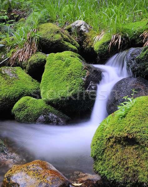 Rivier natuur schoonheid rock waterval rotsen Stockfoto © asturianu