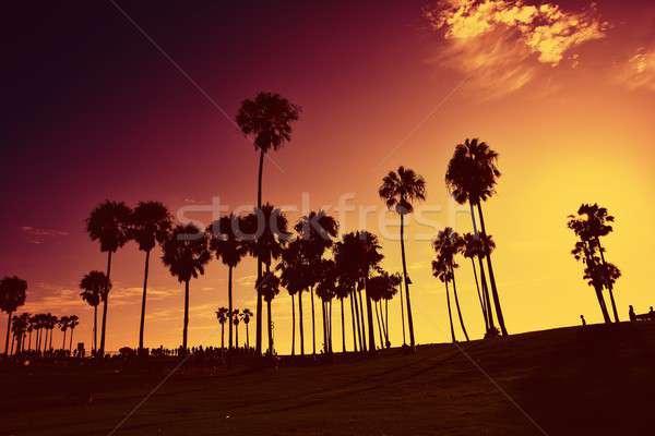 Zonsondergang Venetië strand Californië USA silhouetten Stockfoto © asturianu