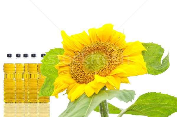 óleo de girassol isolado branco comida saúde fundo Foto stock © asturianu