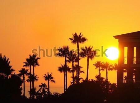Amazing seascape in sunset Stock photo © asturianu