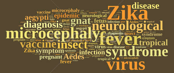 Word cloud on the Zika virus. Stock photo © asturianu