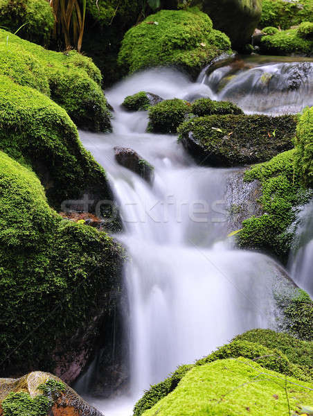 Waterfall. Stock photo © asturianu