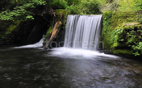 Wodospad lasu wody charakter skał strumienia Zdjęcia stock © asturianu