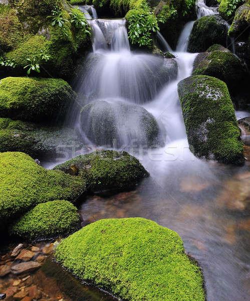 Water silk. Stock photo © asturianu