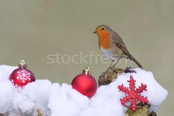 Christmas. Stock photo © asturianu